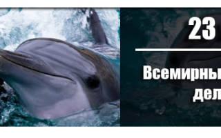 Всемирный день китов и дельфинов 2020