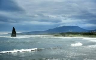 Всемирный день океанов 2020 — 8 июня