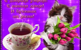 Пожелание с добрым утром подруге в прозе