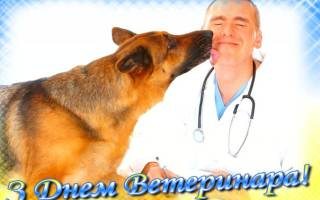 Поздравление с Днем ветеринара