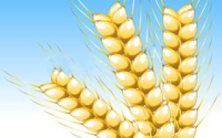 День работников сельского хозяйства Украины 2020