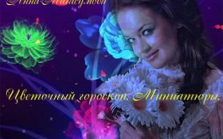 Поздравления по цветочному гороскопу Бессмертник