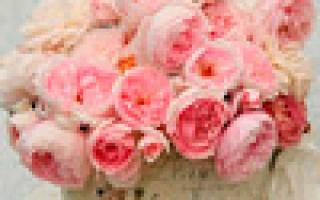 Красивые пожелания и стихи на 8 Марта Тане