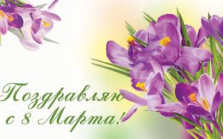 Поздравление с 8 Марта на Вы — стихи, проза, смс