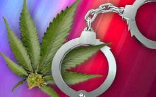 День наркоконтроля — поздравления, стихи, смс