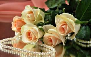 Жемчужная свадьба — поздравления теще и тестю