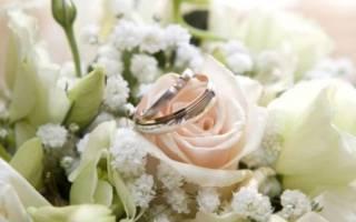 Поздравления на Опаловая свадьба (21 год) в прозе
