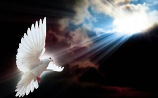 Духов день. День Святого Духа 2020
