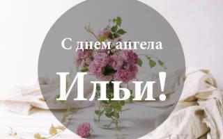 Именины Ильи, поздравление Илье в прозе