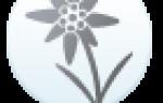 Поздравления по цветочному гороскопу Эдельвейс смс