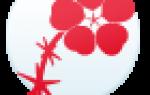 Поздравления по цветочному гороскопу Портулак