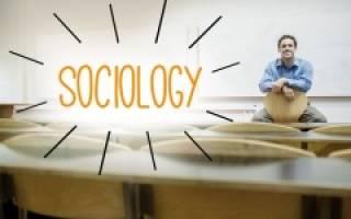 Когда День социолога 2020 — 14 ноября